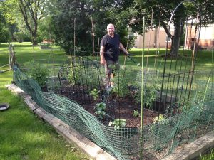 Earlier in the season, Mark Rothenberg of West Bloomfield takes care of young plants.