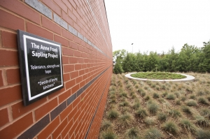 A new plaque honors the Anne Frank sapling in its new home at the HMC.