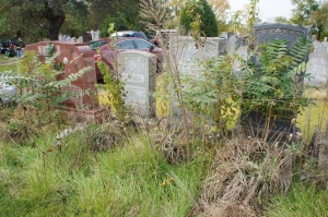 The cemetery prior to the first community cleanup