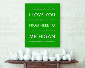 4b-michigan_hsjp_houzzfancy1a